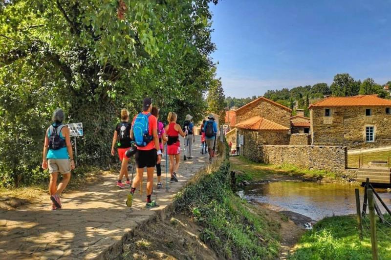 El camino de Santiago desde Sarria