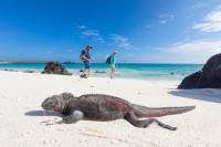 La magia de la Isla Isabela en Galápagos